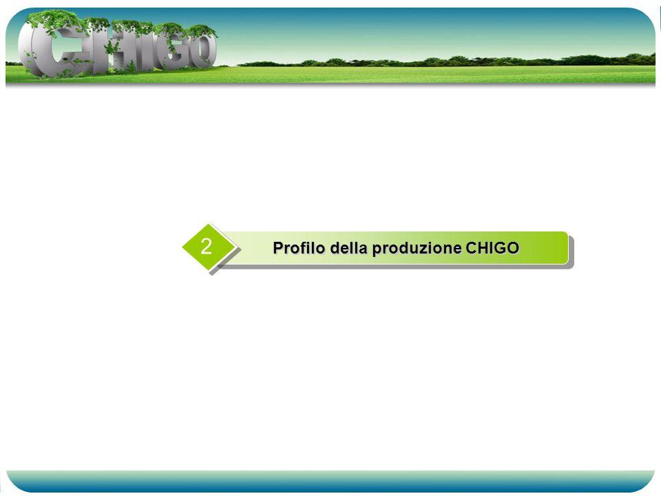 Profilo della produzione CHIGO 2