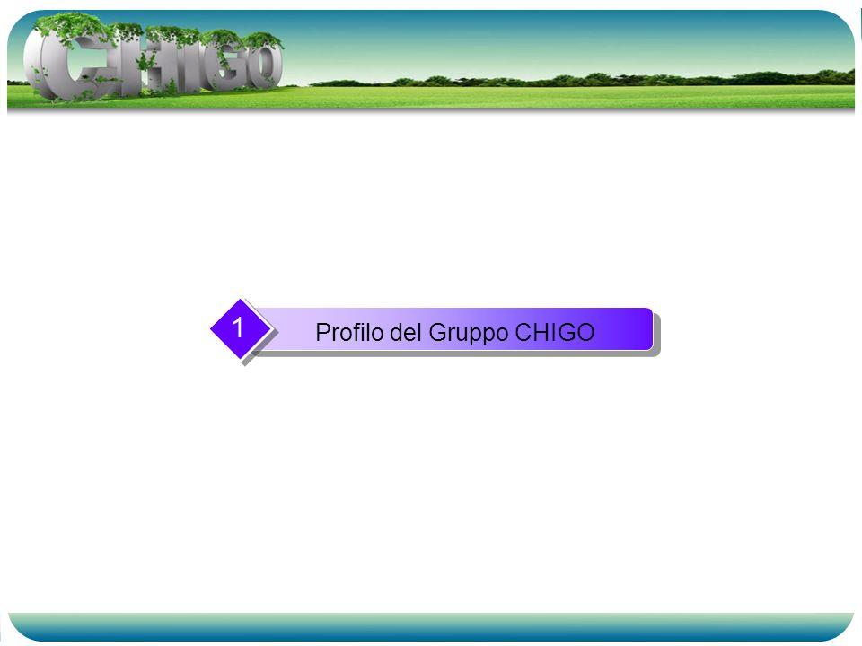 Profilo del Gruppo CHIGO 1