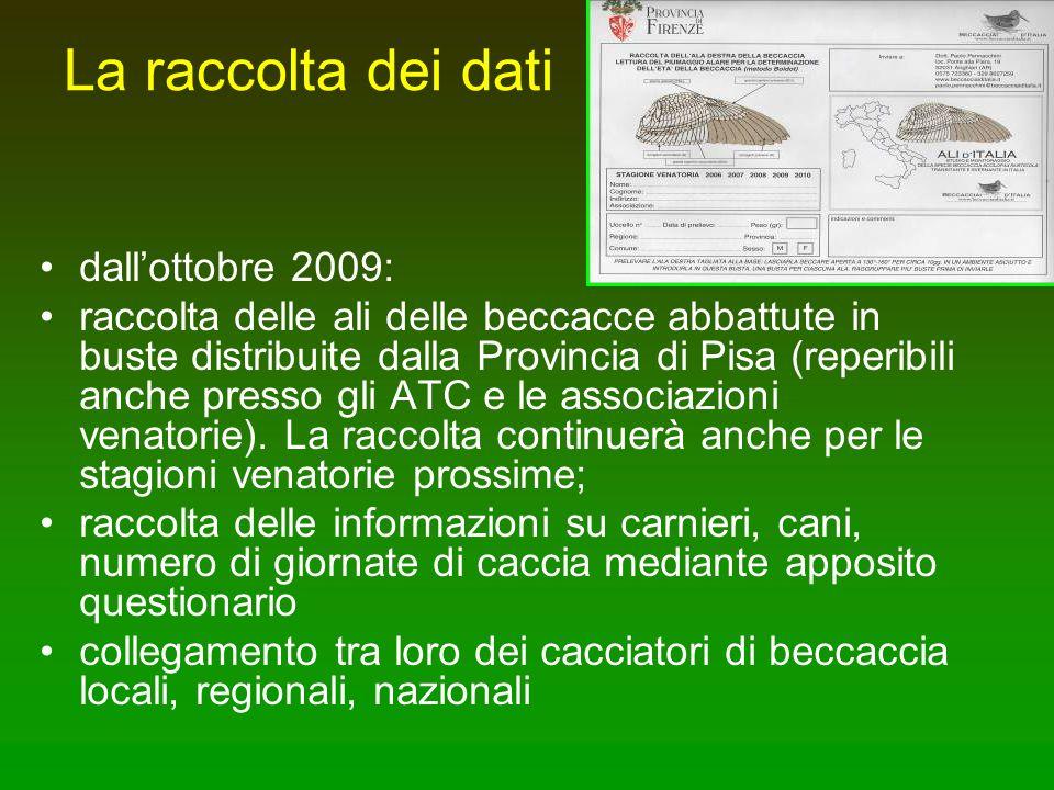 La raccolta dei dati dallottobre 2009: raccolta delle ali delle beccacce abbattute in buste distribuite dalla Provincia di Pisa (reperibili anche pres