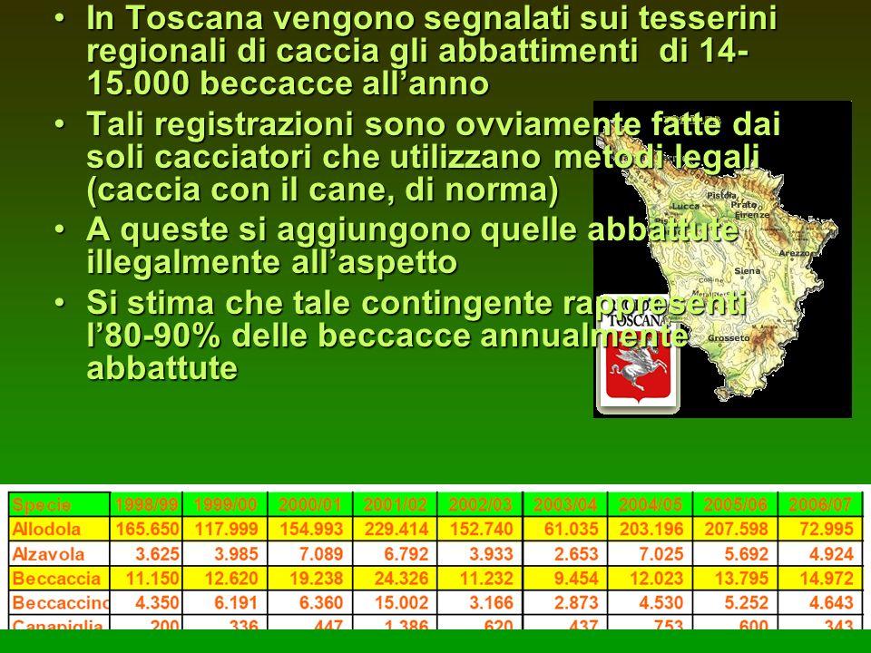In Toscana vengono segnalati sui tesserini regionali di caccia gli abbattimenti di 14- 15.000 beccacce allannoIn Toscana vengono segnalati sui tesseri