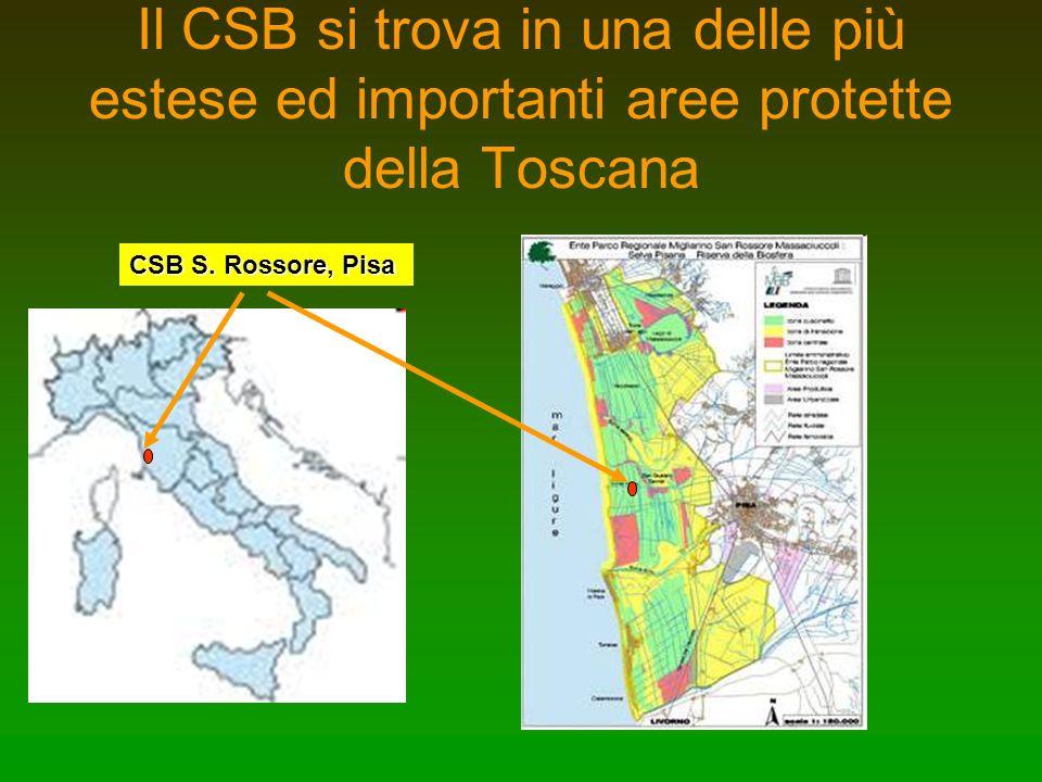 Il CSB si trova in una delle più estese ed importanti aree protette della Toscana CSB S. Rossore, Pisa