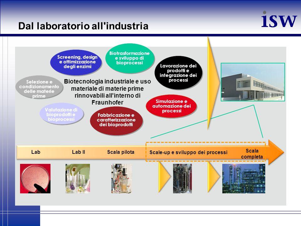 Dal laboratorio all'industria Selezione e condizionamento delle materie prime Biotrasformazione e sviluppo di bioprocessi Lavorazione dei prodotti e i