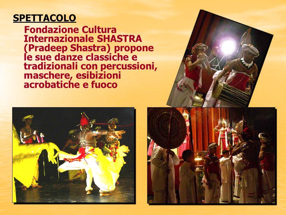 I MONACI TIBETANI: danze, canti, musica del Tibet I MONACI TIBETANI: danze, canti, musica del Tibet SPETTACOLO
