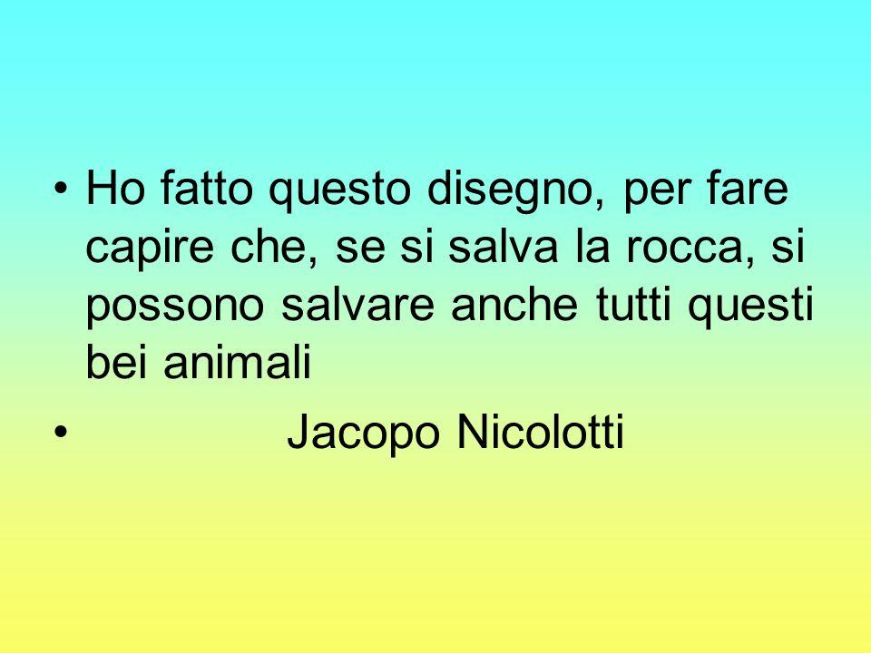Ho fatto questo disegno, per fare capire che, se si salva la rocca, si possono salvare anche tutti questi bei animali Jacopo Nicolotti