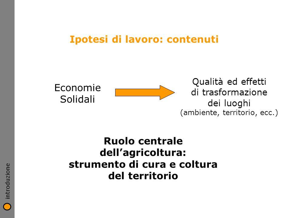 introduzione Ipotesi di lavoro: contenuti Economie Solidali Qualità ed effetti di trasformazione dei luoghi (ambiente, territorio, ecc.) Ruolo central