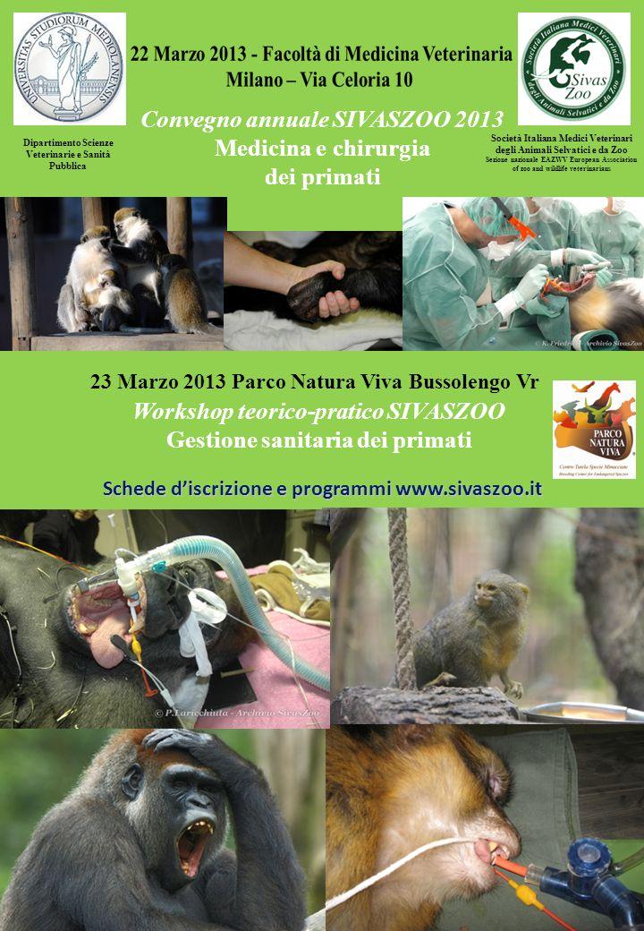 Convegno annuale SIVASZOO 2013 Medicina e chirurgia dei primati Società Italiana Medici Veterinari degli Animali Selvatici e da Zoo Sezione nazionale