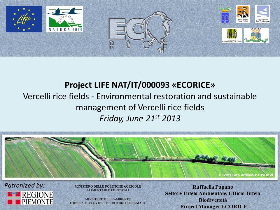 Project LIFE NAT/IT/000093 «ECORICE» Provincia di Vercelli coordinating beneficiary BUDGET : 1.441.900,00 EU COFINANCING (50%): 720.950,00 DURATION: sept.