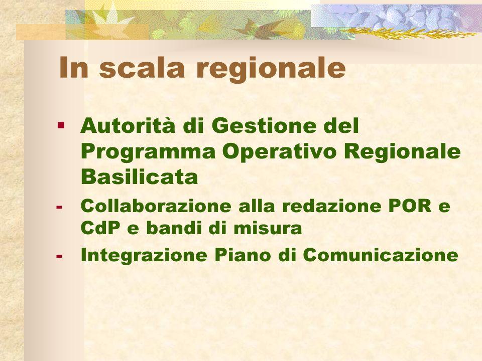 In scala regionale Autorità di Gestione del Programma Operativo Regionale Basilicata -Collaborazione alla redazione POR e CdP e bandi di misura -Integrazione Piano di Comunicazione