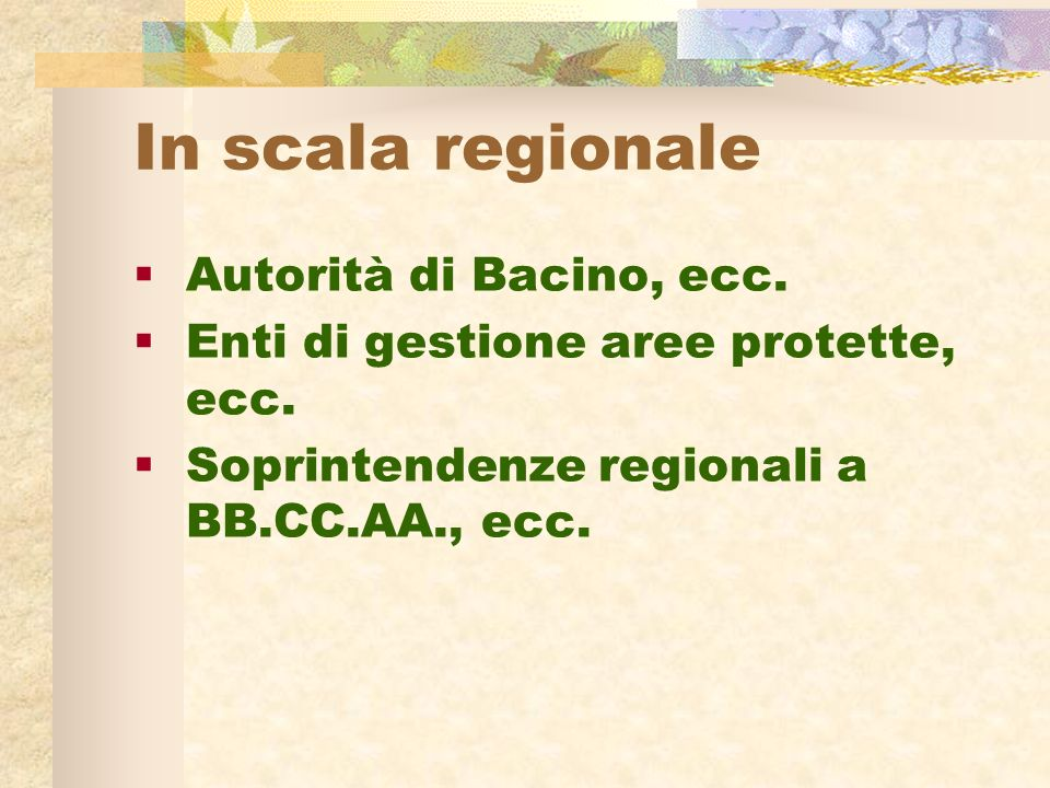 In scala regionale Autorità di Bacino, ecc. Enti di gestione aree protette, ecc.