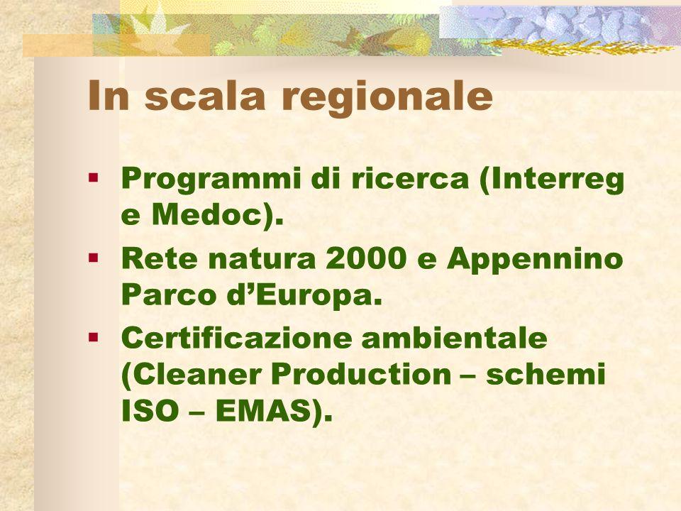 In scala regionale Programmi di ricerca (Interreg e Medoc).