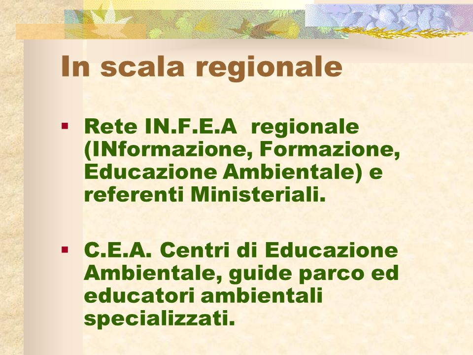 In scala regionale Rete IN.F.E.A regionale (INformazione, Formazione, Educazione Ambientale) e referenti Ministeriali.