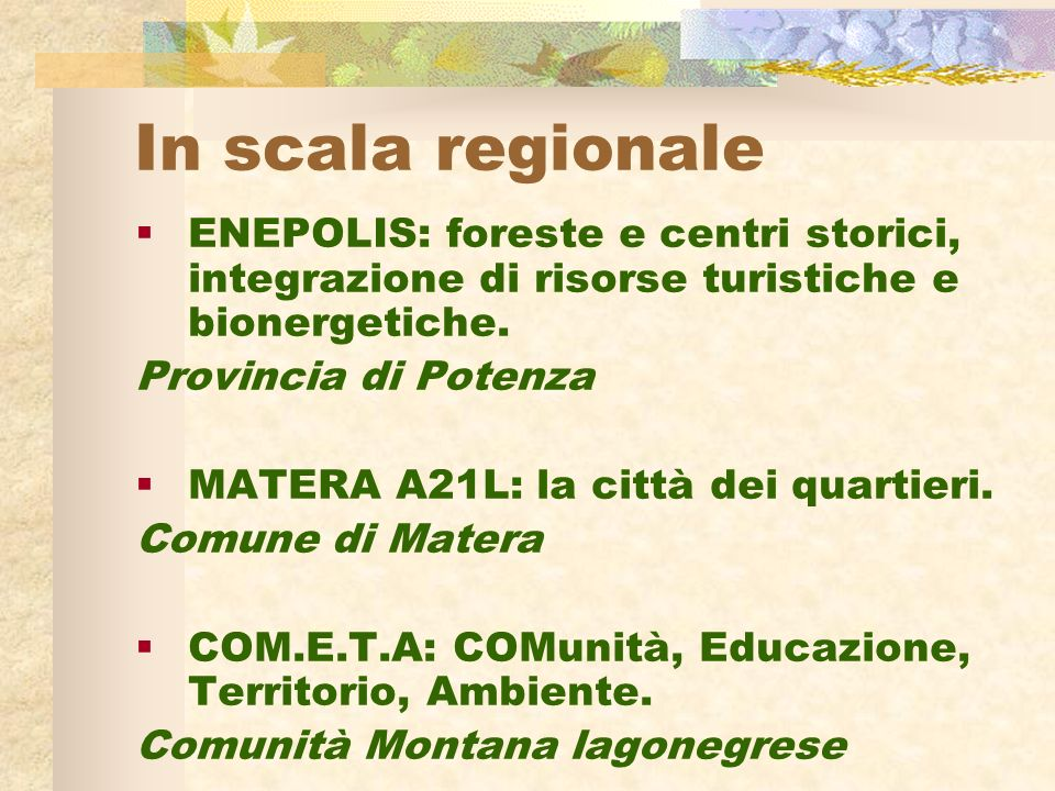 In scala regionale ENEPOLIS: foreste e centri storici, integrazione di risorse turistiche e bionergetiche.