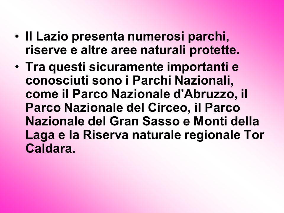 Il Lazio presenta numerosi parchi, riserve e altre aree naturali protette. Tra questi sicuramente importanti e conosciuti sono i Parchi Nazionali, com
