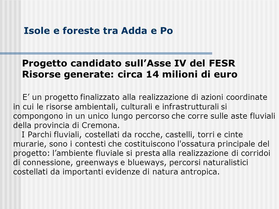 Isole e foreste tra Adda e Po Progetto candidato sullAsse IV del FESR Risorse generate: circa 14 milioni di euro E un progetto finalizzato alla realiz