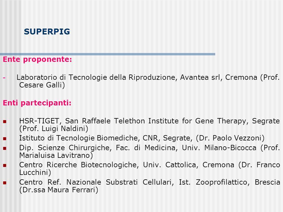 SUPERPIG Ente proponente: - Laboratorio di Tecnologie della Riproduzione, Avantea srl, Cremona (Prof. Cesare Galli) Enti partecipanti: HSR-TIGET, San