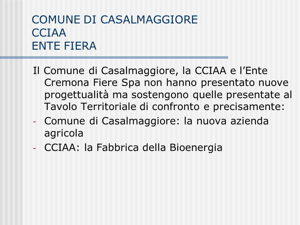 COMUNE DI CASALMAGGIORE CCIAA ENTE FIERA Il Comune di Casalmaggiore, la CCIAA e lEnte Cremona Fiere Spa non hanno presentato nuove progettualità ma so