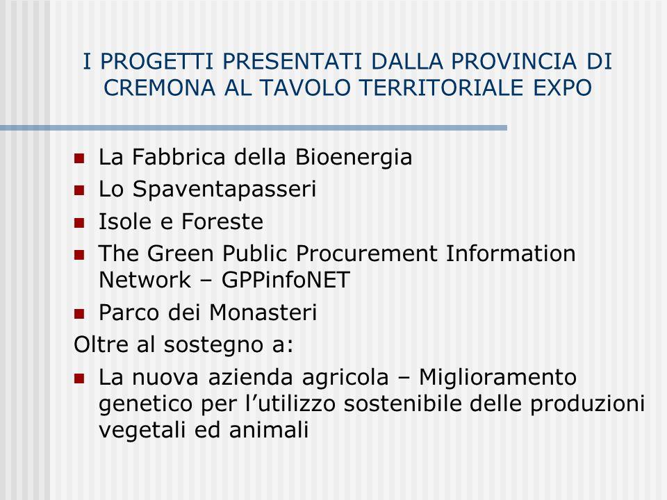 I GRANDI PROGETTI DI VIABILITA SOSTENUTI E FINANZIATI DALLA PROVINCIA DI CREMONA IN FUNZIONE DI EXPO RADDOPPIO DELLA PAULLESE DA CREMA A CASTELLEONE (Madignano-Oriolo)- CREMONA (Centro Padane) AMPLIAMENTO DELLA BERGAMINA COLLEGAMENTO TRA MONTODINE E CASTELLEONE (EX SS 591) EX SS LODI-CREMA MM3 (gialla) FINO A PAULLO CREMONA FIERA-OLMENETA (FERROVIA) - RADDOPPIO CREMA-TREVIGLIO-MILANO