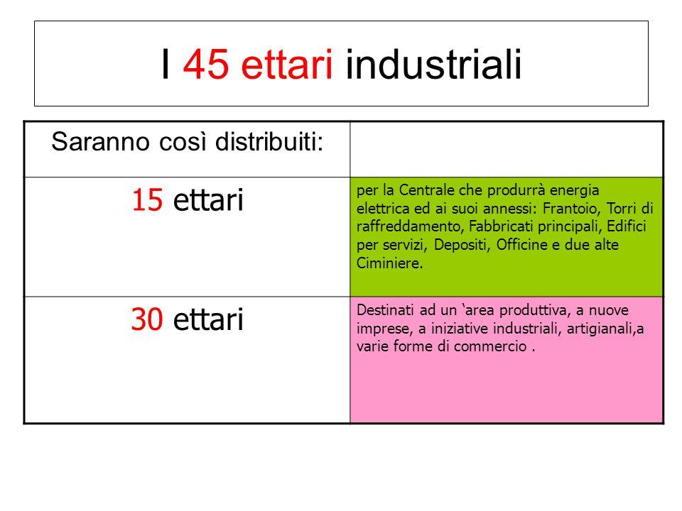 I 45 ettari industriali Saranno così distribuiti: 15 ettari per la Centrale che produrrà energia elettrica ed ai suoi annessi: Frantoio, Torri di raffreddamento, Fabbricati principali, Edifici per servizi, Depositi, Officine e due alte Ciminiere.