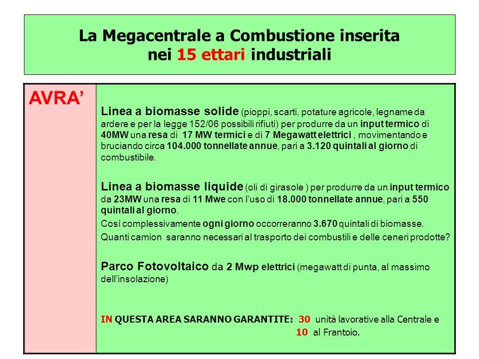 La Megacentrale a Combustione inserita nei 15 ettari industriali AVRA Linea a biomasse solide (pioppi, scarti, potature agricole, legname da ardere e