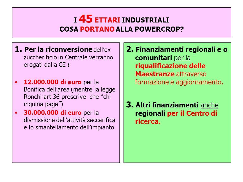 I 45 ETTARI INDUSTRIALI COSA PORTANO ALLA POWERCROP? 1. Per la riconversione dellex zuccherificio in Centrale verranno erogati dalla CE : 12.000.000 d