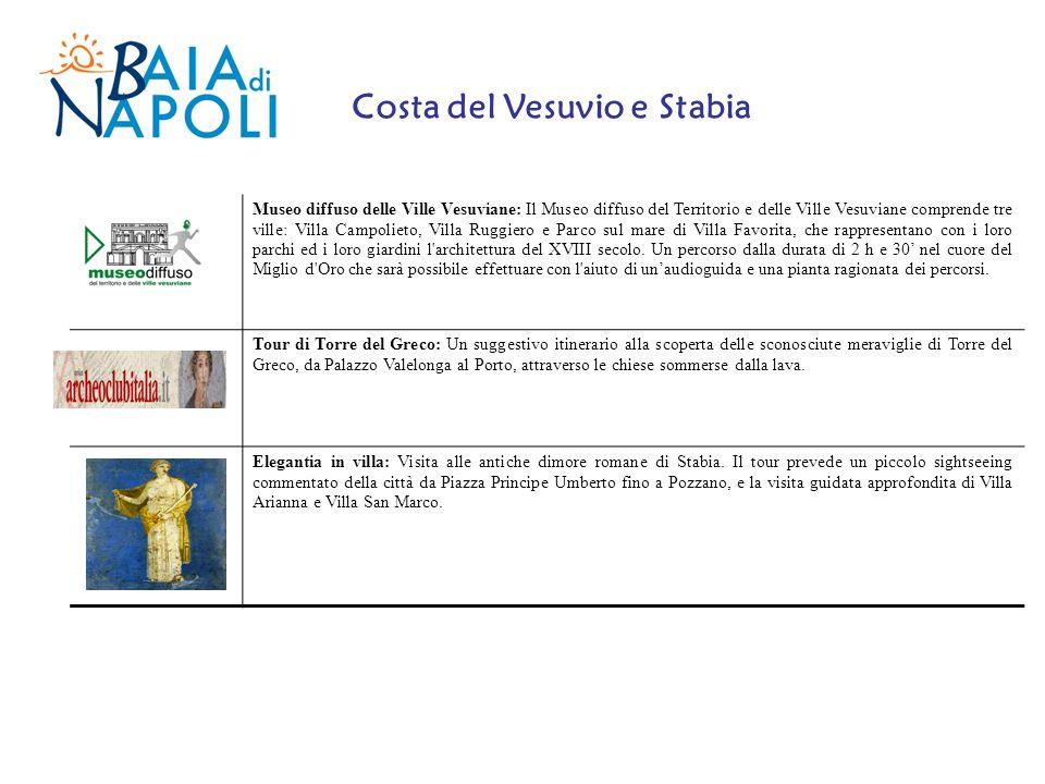 Museo diffuso delle Ville Vesuviane: Il Museo diffuso del Territorio e delle Ville Vesuviane comprende tre ville: Villa Campolieto, Villa Ruggiero e P