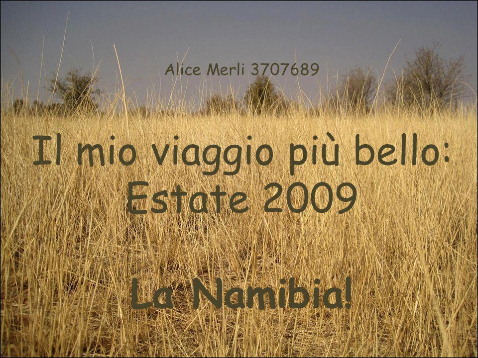 Alice Merli 3707689 Il mio viaggio più bello: Estate 2009 La Namibia!