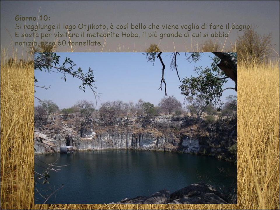 Giorno 10: Si raggiunge il lago Otjikoto, è così bello che viene voglia di fare il bagno! E sosta per visitare il meteorite Hoba, il più grande di cui