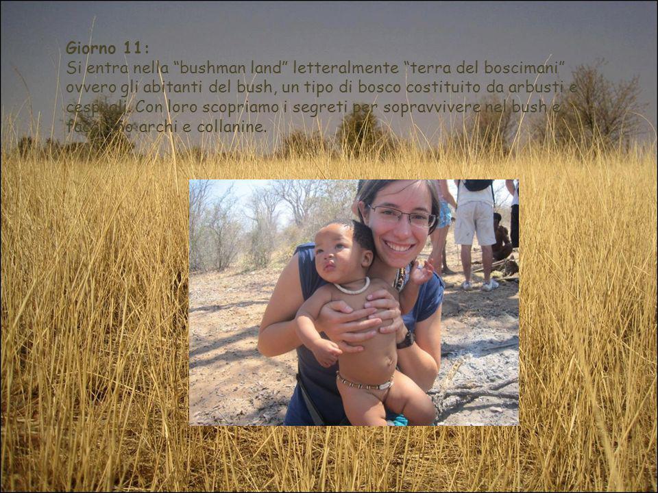 Giorno 11: Si entra nella bushman land letteralmente terra del boscimani ovvero gli abitanti del bush, un tipo di bosco costituito da arbusti e cespug