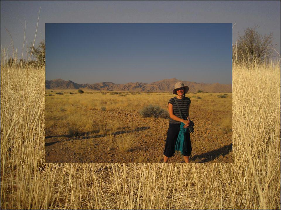 La Namibia è un paese dellAfrica meridionale di impareggiabile bellezza.