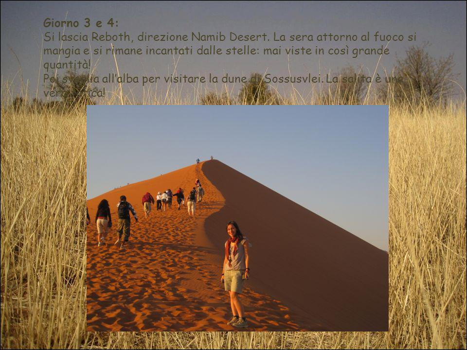 Giorno 3 e 4: Si lascia Reboth, direzione Namib Desert. La sera attorno al fuoco si mangia e si rimane incantati dalle stelle: mai viste in così grand