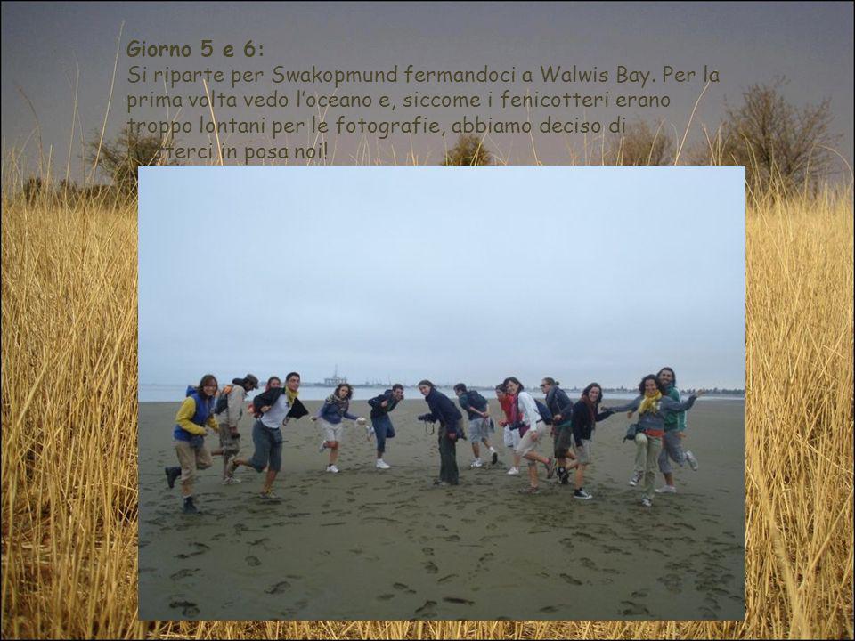 Giorno 5 e 6: Si riparte per Swakopmund fermandoci a Walwis Bay. Per la prima volta vedo loceano e, siccome i fenicotteri erano troppo lontani per le