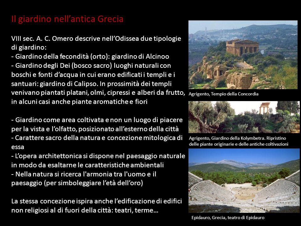 Il giardino nellantica Grecia VIII sec. A. C. Omero descrive nellOdissea due tipologie di giardino: - Giardino della fecondità (orto): giardino di Alc