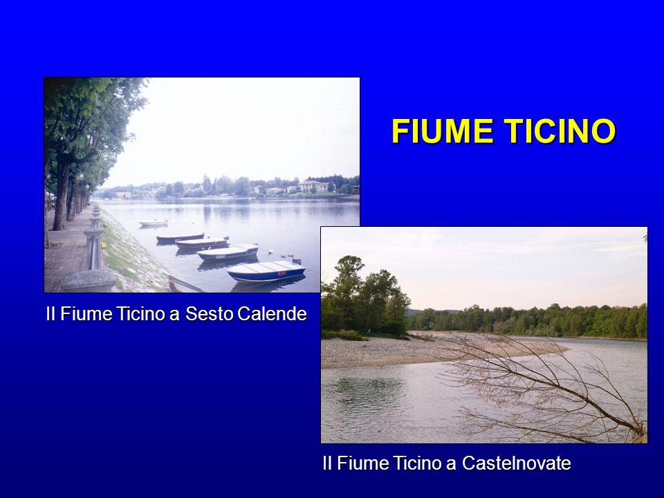 Il Fiume Ticino a Sesto Calende Il Fiume Ticino a Castelnovate FIUME TICINO