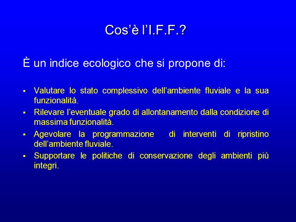 Cosè lI.F.F.? È un indice ecologico che si propone di: Valutare lo stato complessivo dellambiente fluviale e la sua funzionalità. Rilevare leventuale