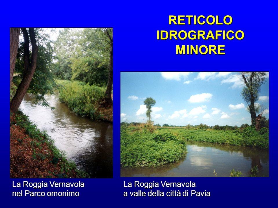 La Roggia Vernavola nel Parco omonimo La Roggia Vernavola a valle della città di Pavia RETICOLO IDROGRAFICO MINORE