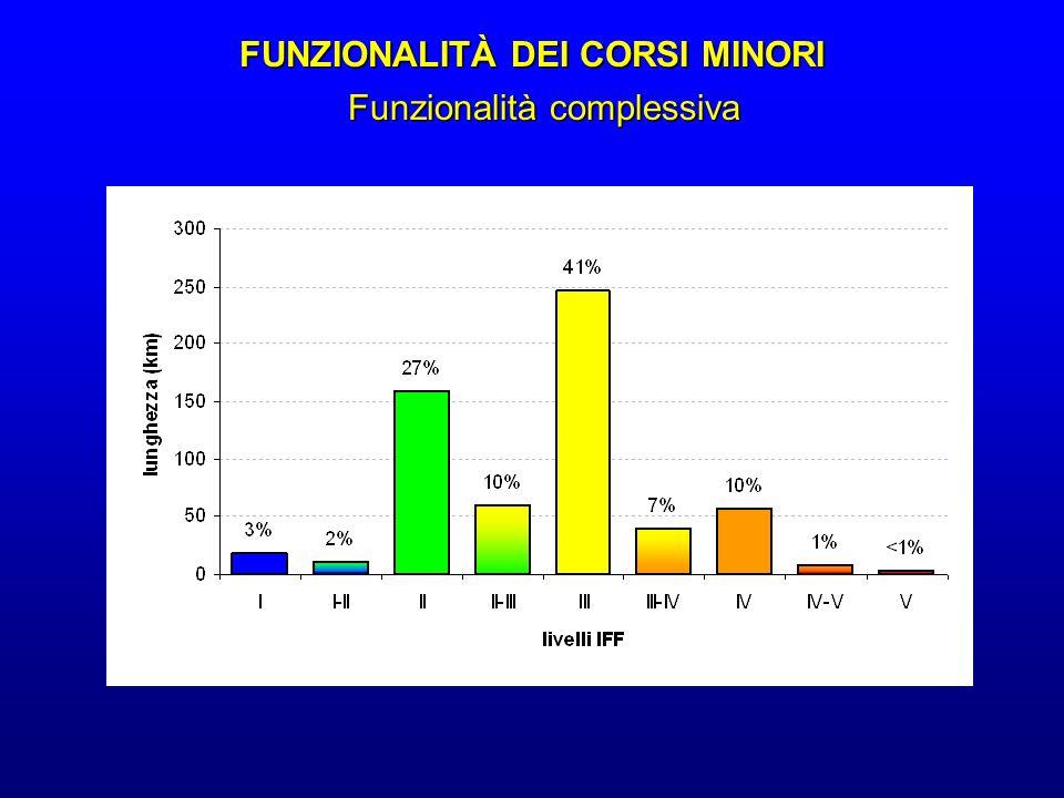 FUNZIONALITÀ DEI CORSI MINORI Funzionalità complessiva