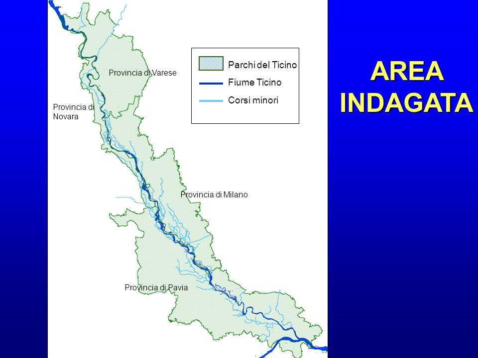Provincia di Varese Provincia di Novara Provincia di Milano Provincia di Pavia Parchi del Ticino Fiume Ticino Corsi minori AREA INDAGATA