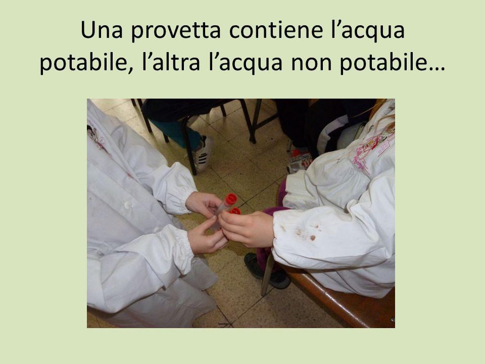 Una provetta contiene lacqua potabile, laltra lacqua non potabile…