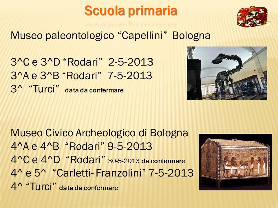 Museo paleontologico Capellini Bologna 3^C e 3^D Rodari 2-5-2013 3^A e 3^B Rodari 7-5-2013 3^ Turci data da confermare Museo Civico Archeologico di Bo