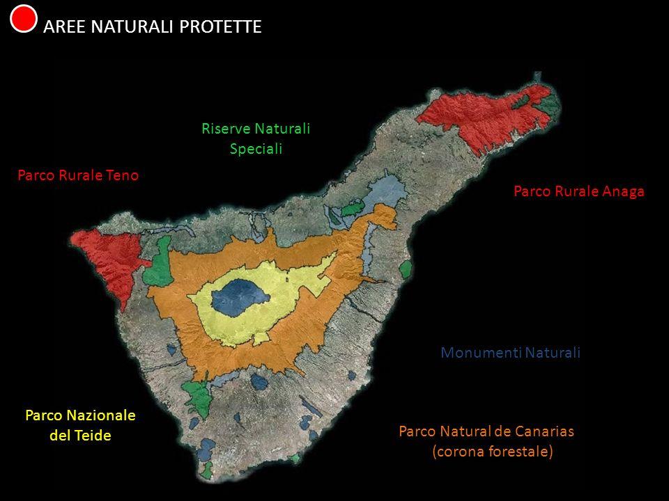 AREE NATURALI PROTETTE Parco Nazionale del Teide Parco Natural de Canarias (corona forestale) Parco Rurale Anaga Parco Rurale Teno Riserve Naturali Integrali Riserve Naturali Speciali Monumenti Naturali Paesaggi Protetti