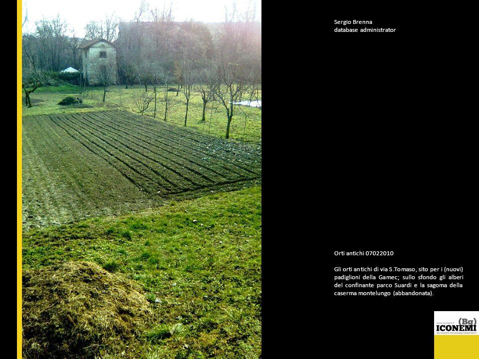 Sergio Brenna database administrator Orti antichi 07022010 Gli orti antichi di via S.Tomaso, sito per i (nuovi) padiglioni della Gamec; sullo sfondo g