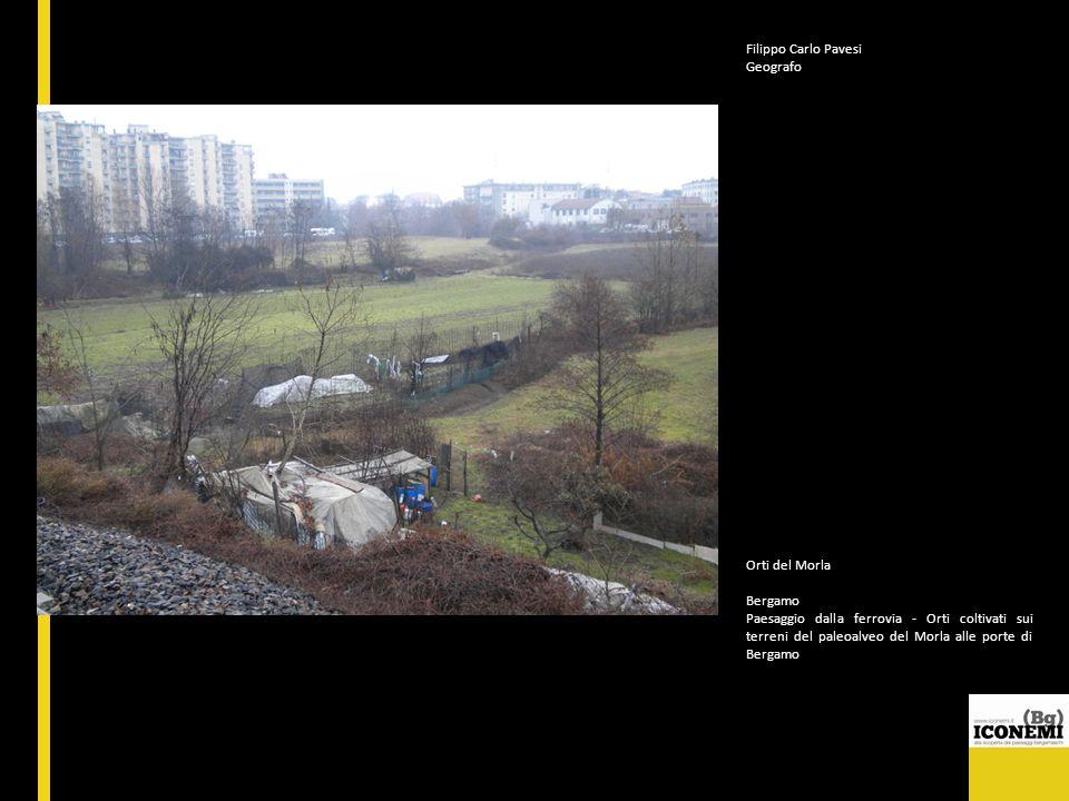 Filippo Carlo Pavesi Geografo Orti del Morla Bergamo Paesaggio dalla ferrovia - Orti coltivati sui terreni del paleoalveo del Morla alle porte di Berg