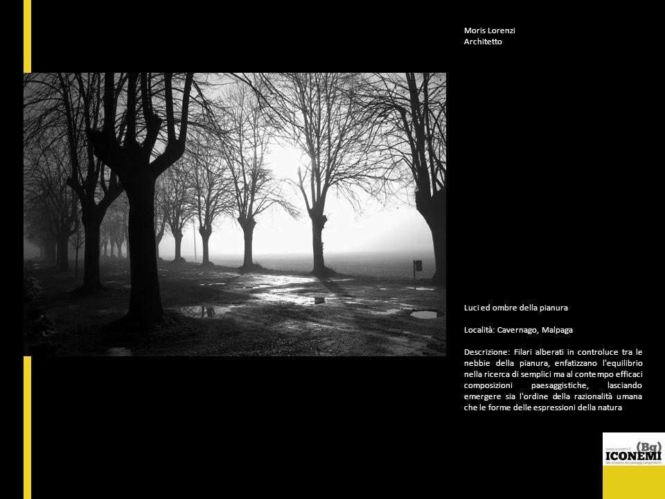 Moris Lorenzi Architetto Luci ed ombre della pianura Località: Cavernago, Malpaga Descrizione: Filari alberati in controluce tra le nebbie della pianu
