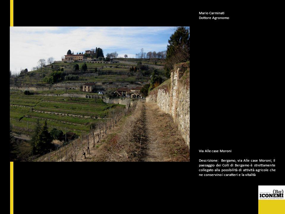 Mario Carminati Dottore Agronomo Via Alle case Moroni Descrizione: Bergamo, via Alle case Moroni; Il paesaggio dei Colli di Bergamo è strettamente col
