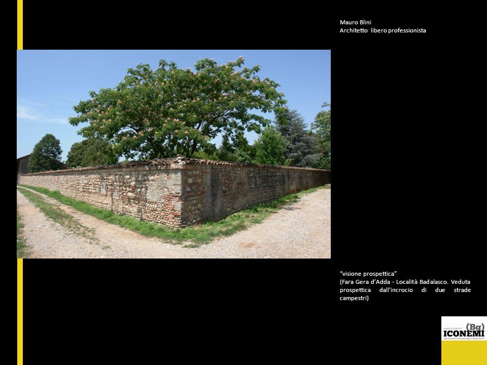Mauro Blini Architetto libero professionista visione prospettica (Fara Gera dAdda - Località Badalasco. Veduta prospettica dallincrocio di due strade