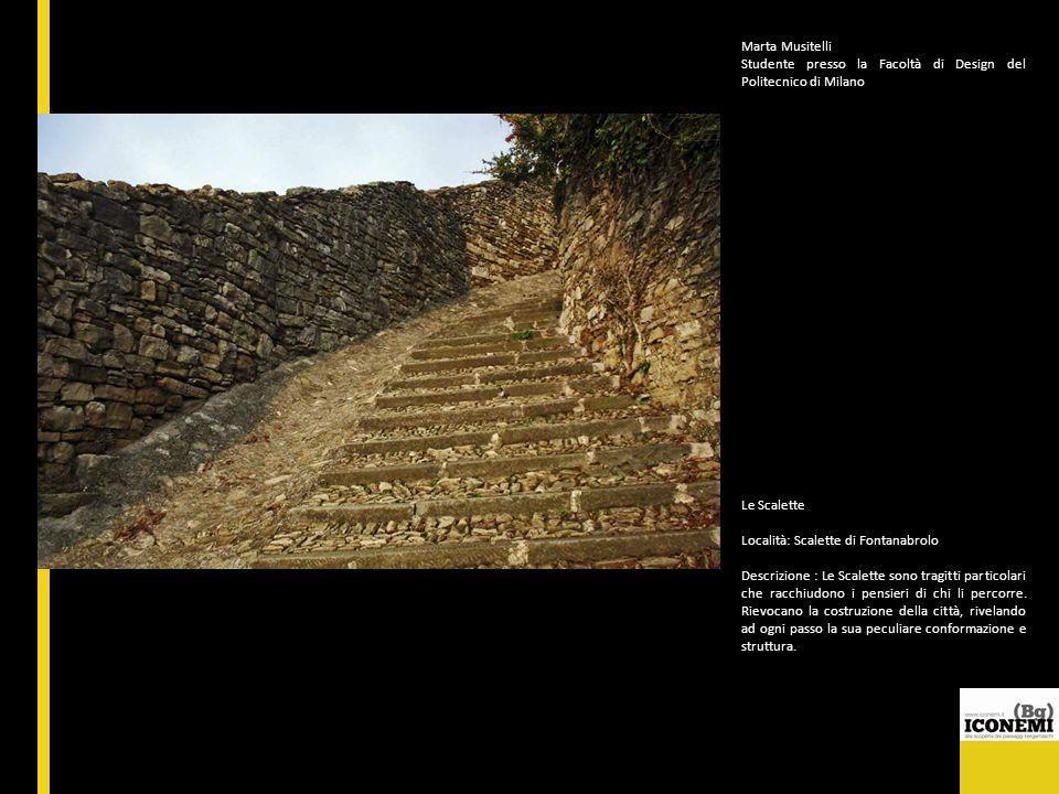 Marta Musitelli Studente presso la Facoltà di Design del Politecnico di Milano Le Scalette Località: Scalette di Fontanabrolo Descrizione : Le Scalett