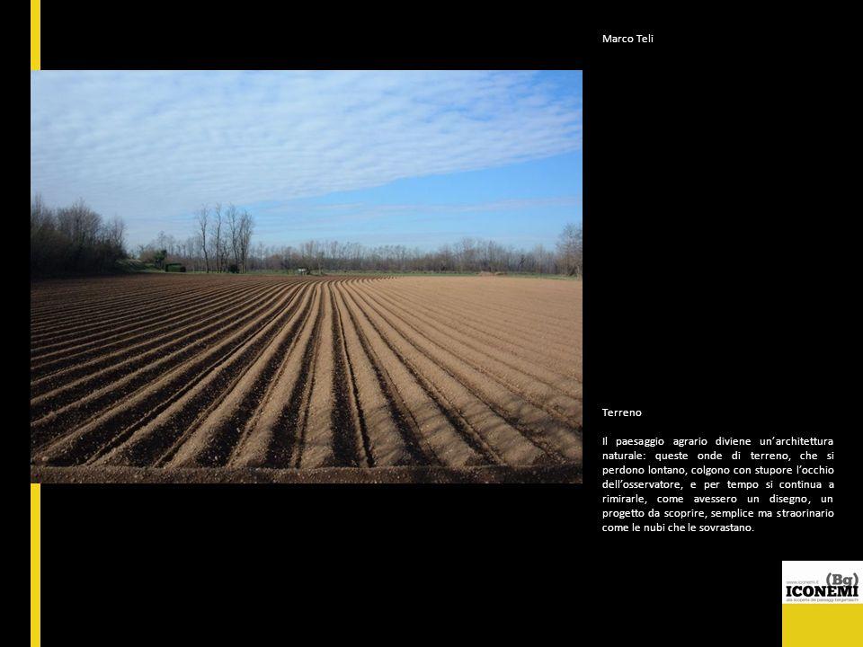 Marco Teli Terreno Il paesaggio agrario diviene unarchitettura naturale: queste onde di terreno, che si perdono lontano, colgono con stupore locchio d
