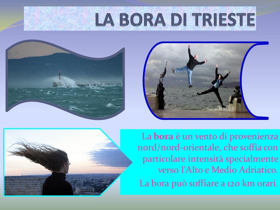 La bora è un vento di provenienza nord/nord-orientale, che soffia con particolare intensità specialmente verso l'Alto e Medio Adriatico. La bora può s