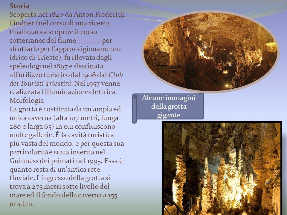 Alcune immagini della grotta gigante Storia Scoperta nel 1840 da Anton Frederick Lindner (nel corso di una ricerca finalizzata a scoprire il corso sot