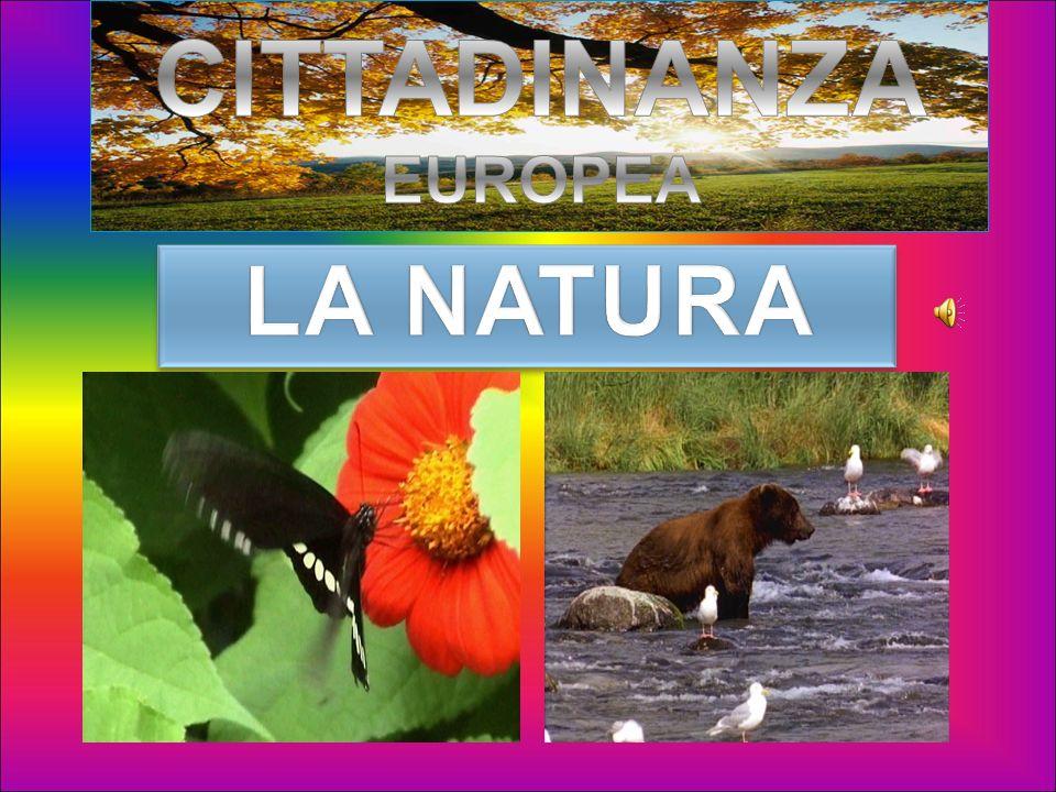 Ciao. Queste diapositive ti porteranno a visitare lEuropa dal punto di vista naturale...